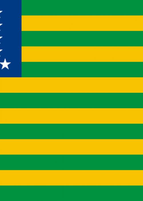Drapeau du Brésil Ruy Barbosa